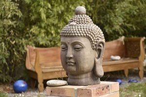 les-sens-de-nelumbo-buddha-banc